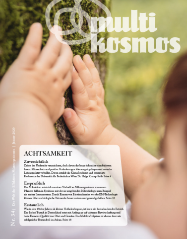 multikosmos Magazin 34