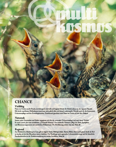 multikosmos Magazin 35