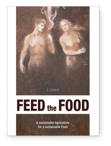 Feed the food, English